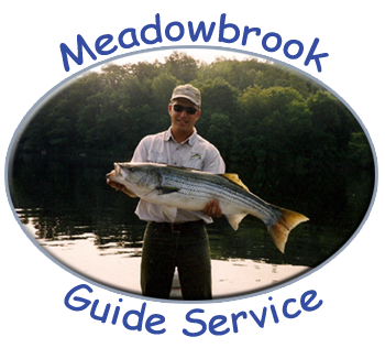 Meadowbrook Guide Service